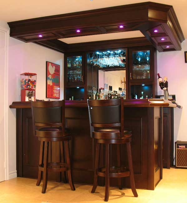 Custom Bars For Homes: Wet Bar With Canopy